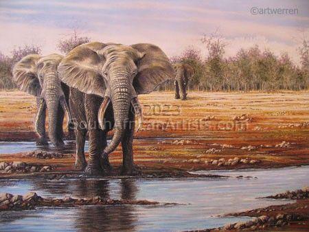 Elephant Drinking Hole