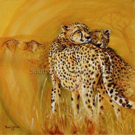 Jagluiperd/Cheetah