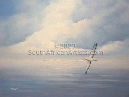 Albatross Sky