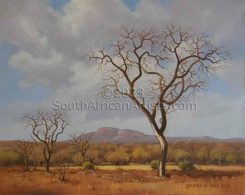 Yonder Hills, Bushveld