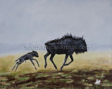 Blue Wildebeest 3