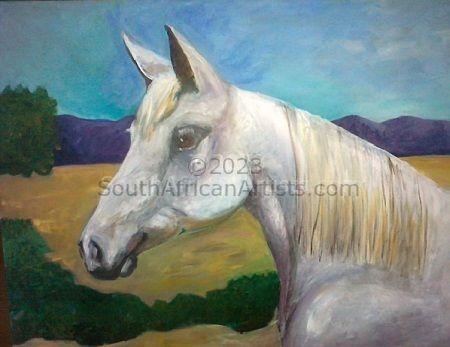 Arabian Horse Profile