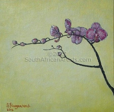Orchid Fuchsia 1
