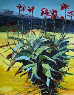 Overberg July Aloe Canola nr 1