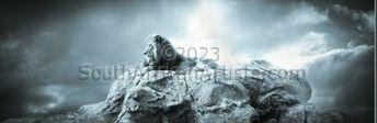 Lion Lying on Rock