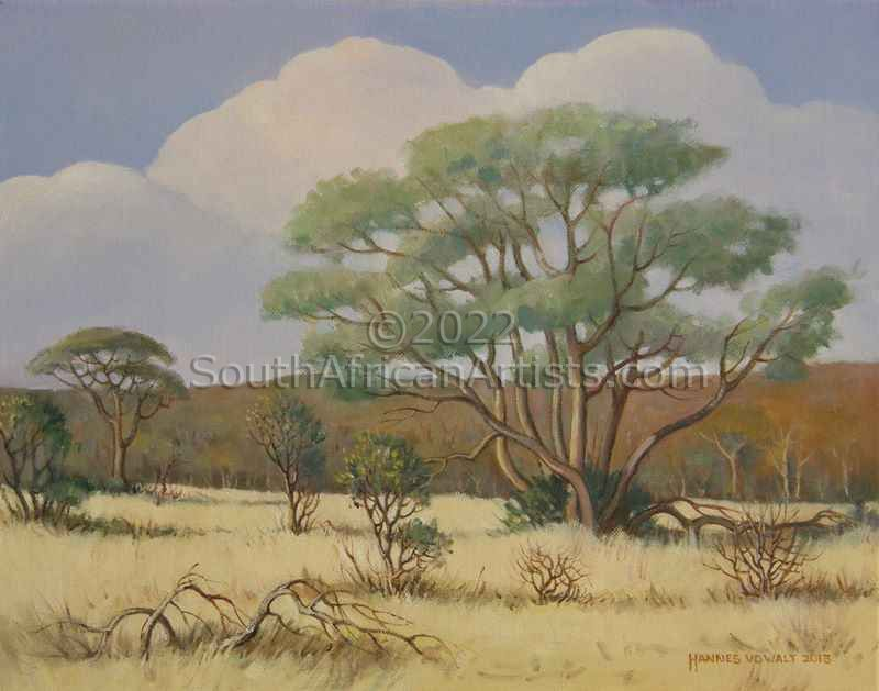 Lowveld Scene with Bushwillow