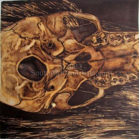 Juvenile Baboon Skull 17