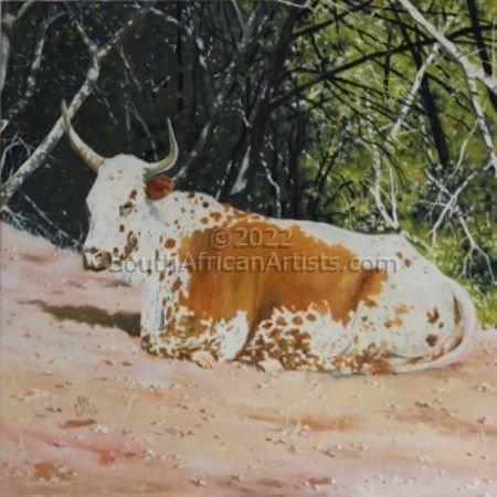 Brown and White Nguni Cow
