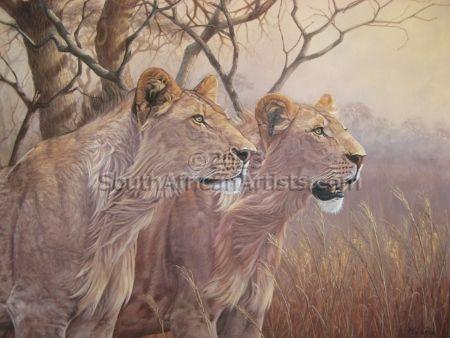 Lions in Morning Light