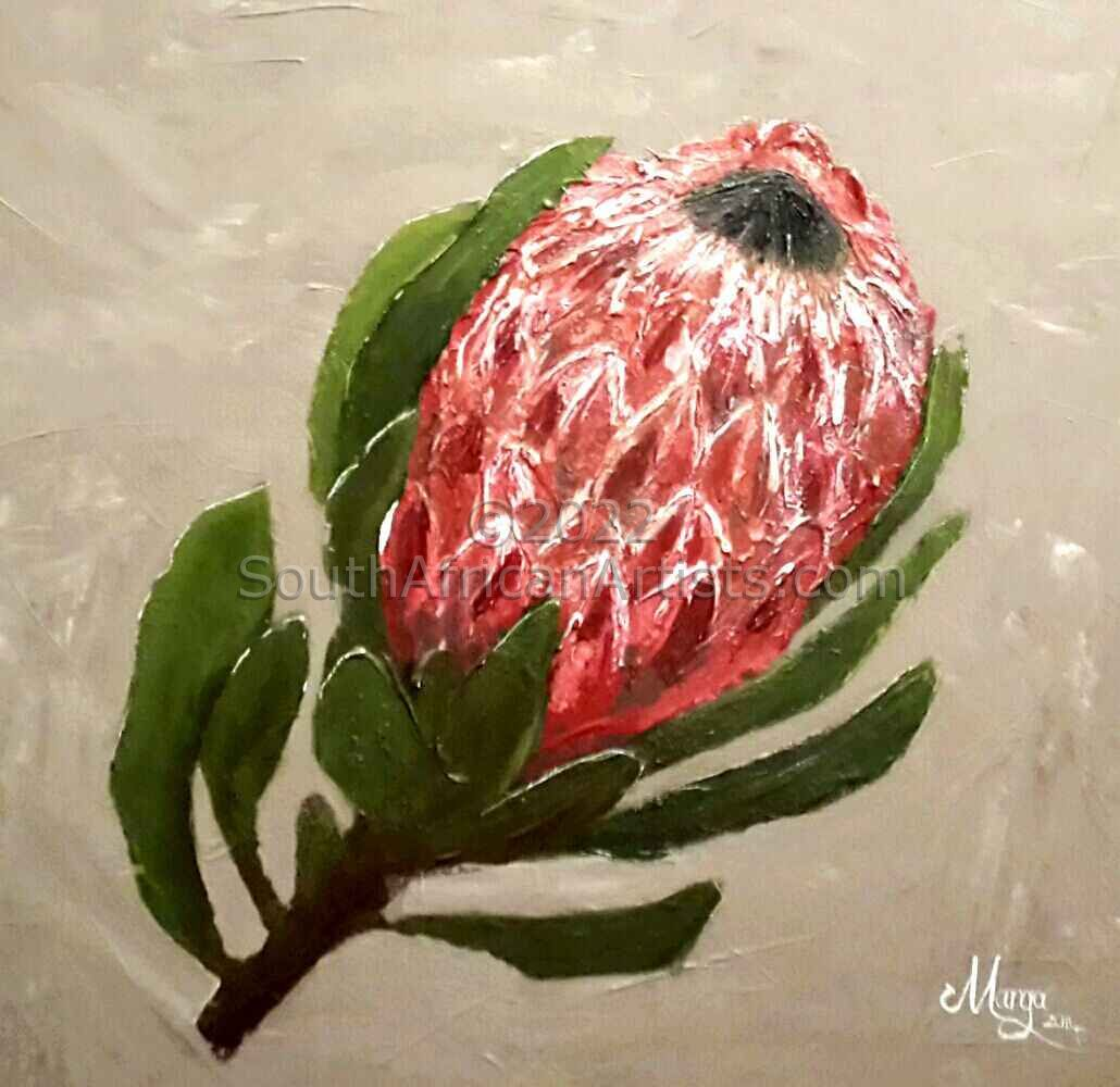 Protea 2