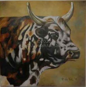 Nguni Colours