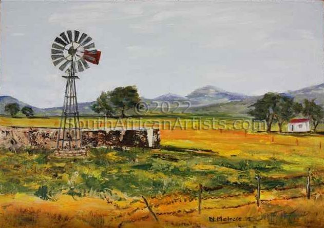Spring in Namaqualand