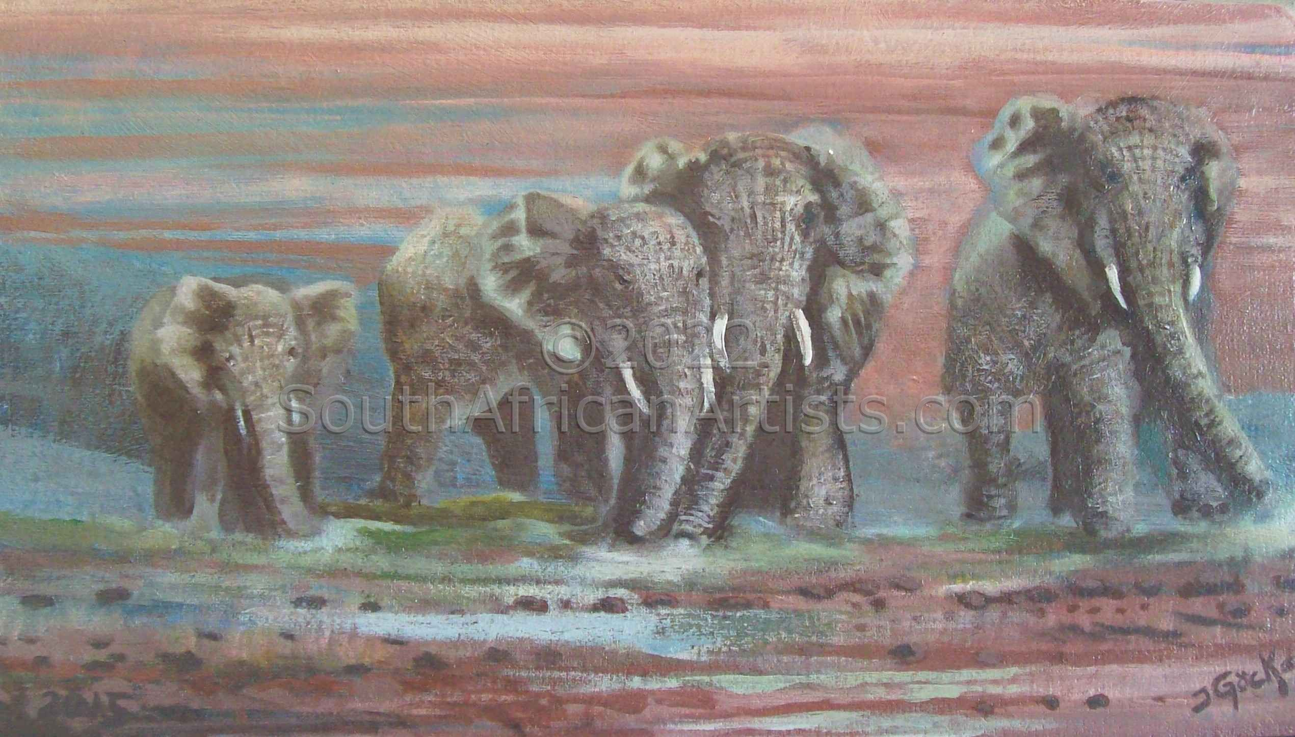 The Dusty Elephants