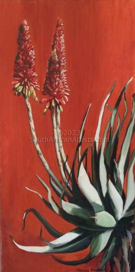 Sienna Aloe 2
