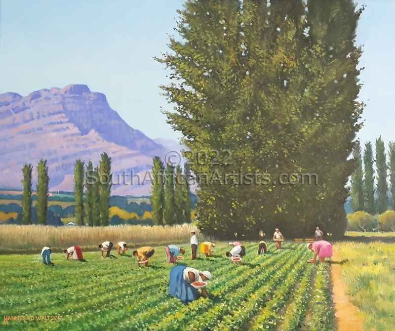 """Strawberry Pickers"""