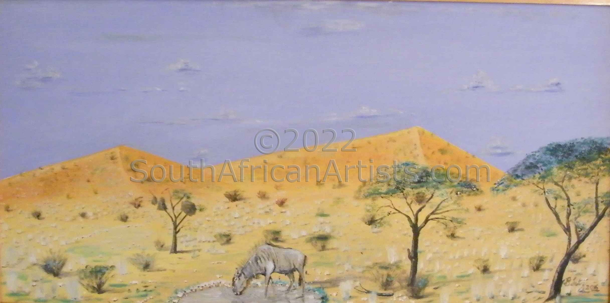 """Lonely in the Kgalagadi"""