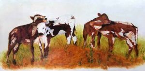 """Four Young Bullocks"""