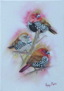 """Pink-throated Twinspots"""