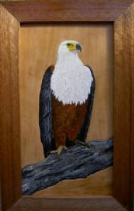 """African Fish eagle on leather"""