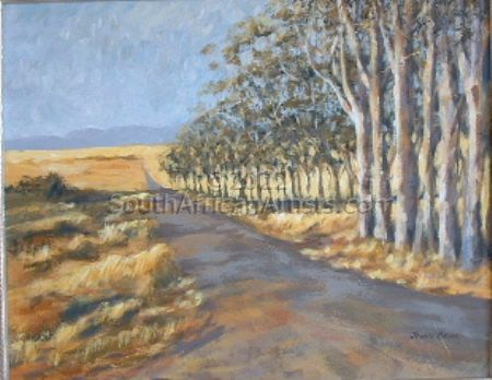 """Road less travelled - Overberg"""