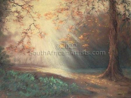 """Sunrays in the Forest"""