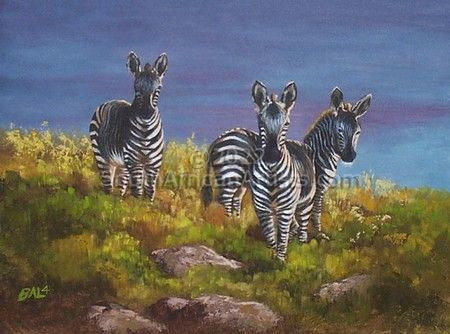 """Twillight Zebras"""