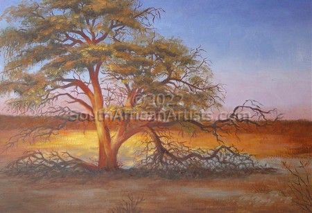 """Kahalari Sunset Tree"""