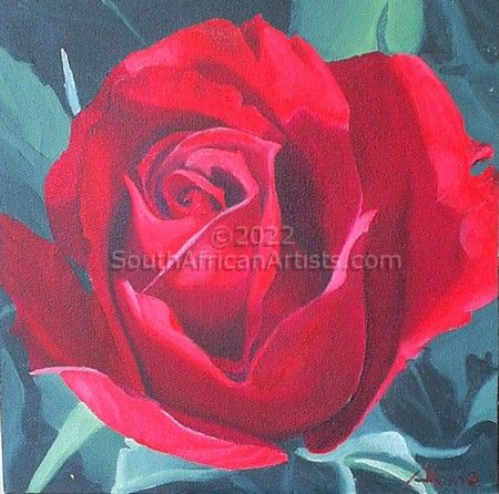 """Red Rose study1"""