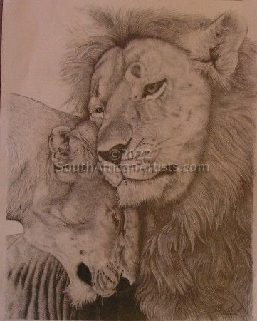 """Contented Lions"""