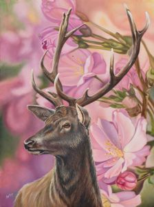 """Rooster 2"""