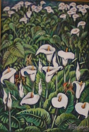 """Arum Lily Meadow"""