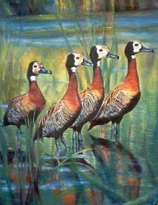 """Whistling Ducks"""