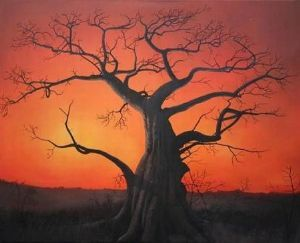 """Sunset with Baobab tree"""