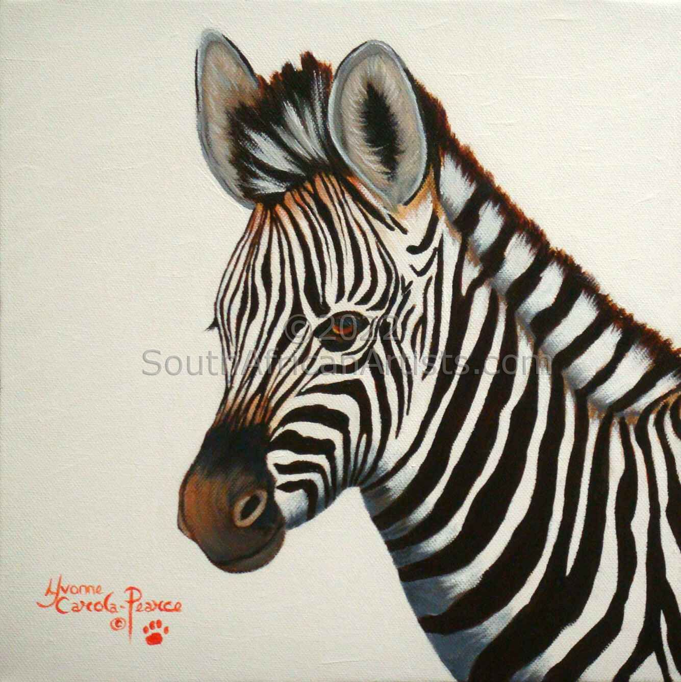 """Young Zebra"""