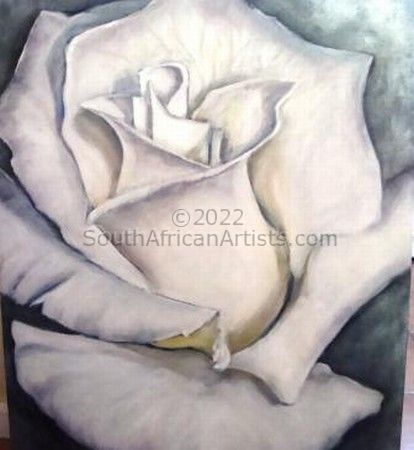 """White Rose on Silver"""