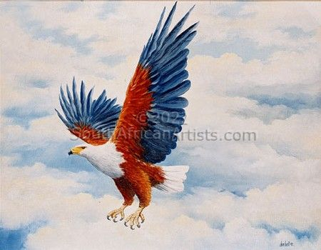 """Eagle Swooping - Fish Eagle"""