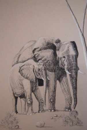 """Elephant Cow and Calf"""