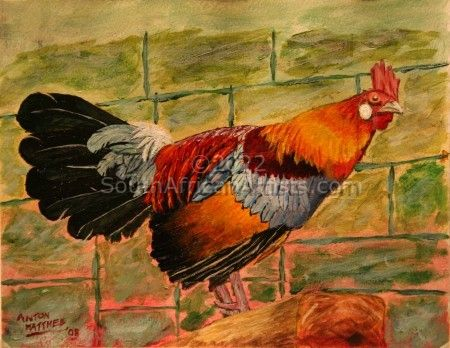 """Rooster - Print"""