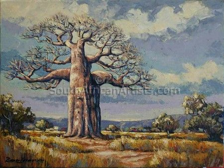 """Baobab Tree Northern Transvaal"""