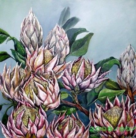 """Proteas in the Mist"""