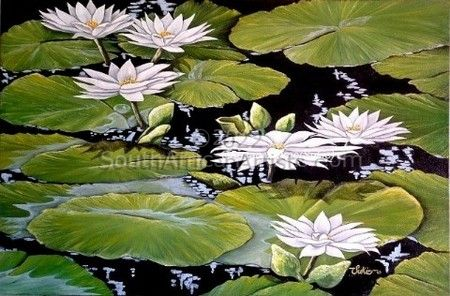"""White Water Lilies"""