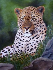 """eye of the leopard"""