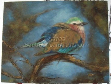 """Lilac Breasted Roller Bird"""