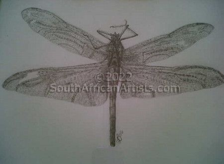 """Dragonfly"""