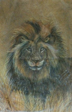 """African Male Lion"""