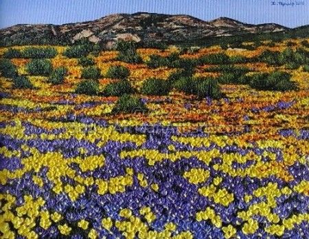 """Namaqualand In bloom"""