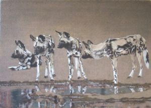 """Wild Dogs with Water"""