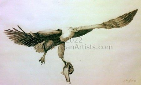"""Flight of the Fish Eagle"""