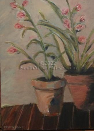 """Orchids in Claypots"""