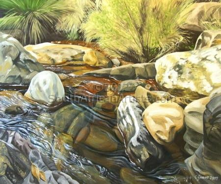 """Stream at Monks Cowl"""